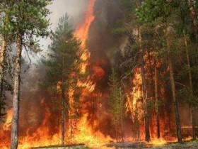 Никогда не забывайте об опасности пожаров и не надейтесь, что с Вами подобного не может случиться.