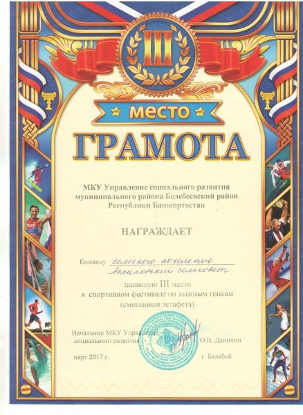 sportivnyj-festival-po-lyzhnym-gonkam-mart-2017.jpeg